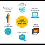 Brain Balance Centers Right Brain Functions