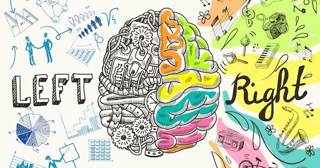 Brain Dominance & the Immune System | Left vs Right Brain