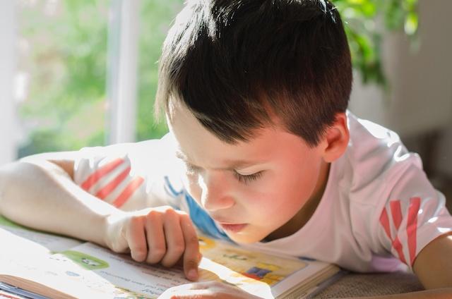 Dyslexia Help for Reading Struggles