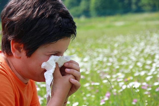 Seasonal Allergies and ADHD in Children