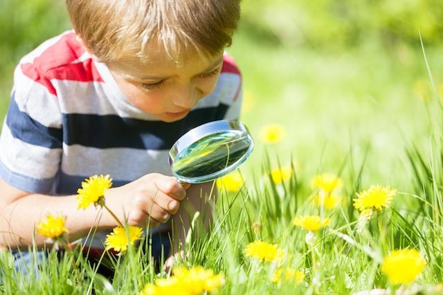 Summer Learning Strategies   Brain Balance Centers