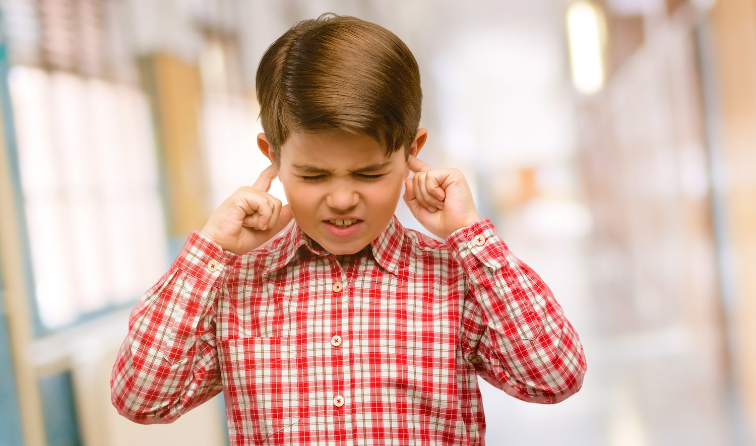 red flags sonsery processing disorder